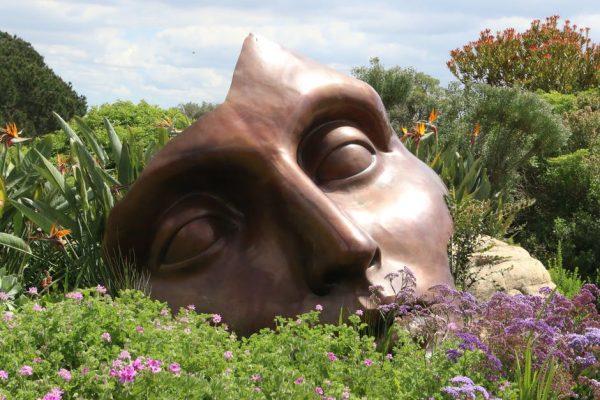 maska w trawie